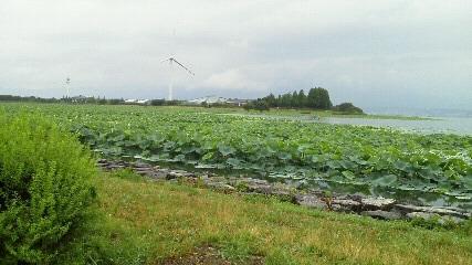 20110718biwako.JPG