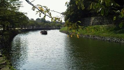 hikonehori2.JPG